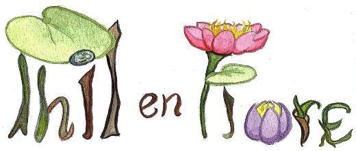 Philenflore,jardinier,paysagiste,boulodrome,SaintTropez,Marseille,Aubagne,jardin